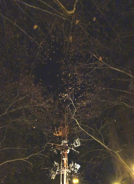 Camino de caasa por la noche 2