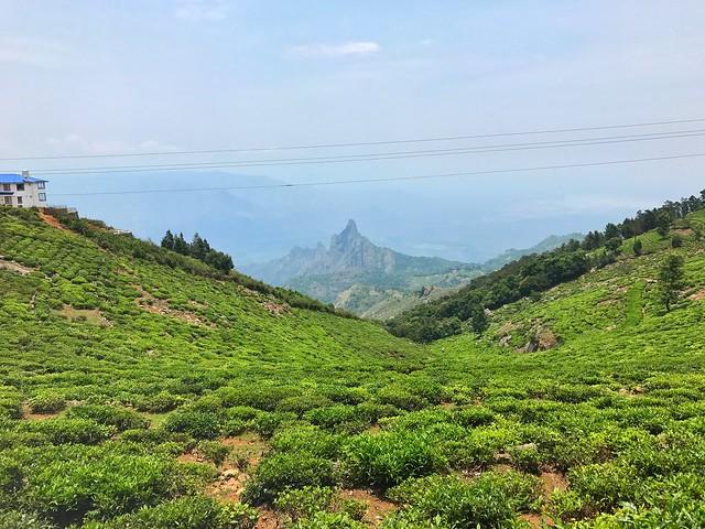 Kodanadu View