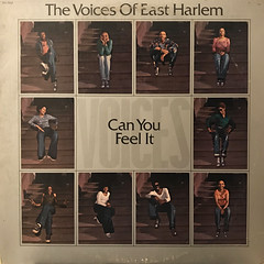 THE VOICES OF EAST HARLEM:CAN YOU FEEL IT(JACKET A)