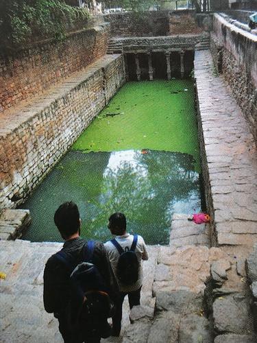 स्पिरुलिना शैवाल की खेती दिल्ली की बावड़ियों में भी सम्भव है