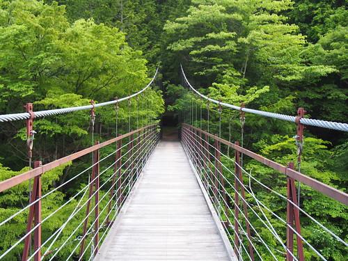 Nohara Suspension Bridge/野原つり橋
