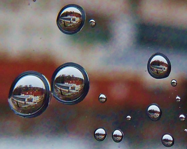 P1110188 Regentropfen / Raindrops