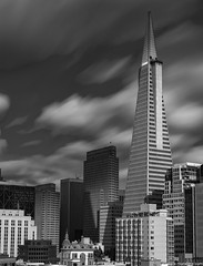 Transamerica Pyramid in Black & White