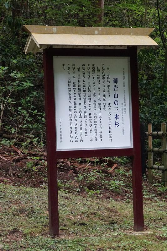 御岩神社 三本杉(御神木)看板