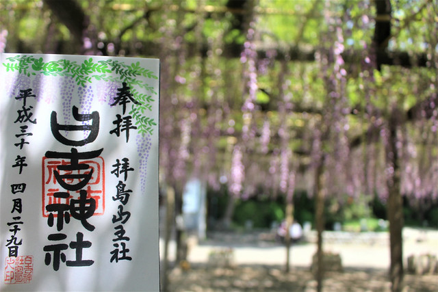 haijimahiyoshi-gosyuin04026