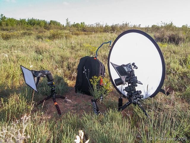 Macro Setup, Fujifilm FinePix JX370