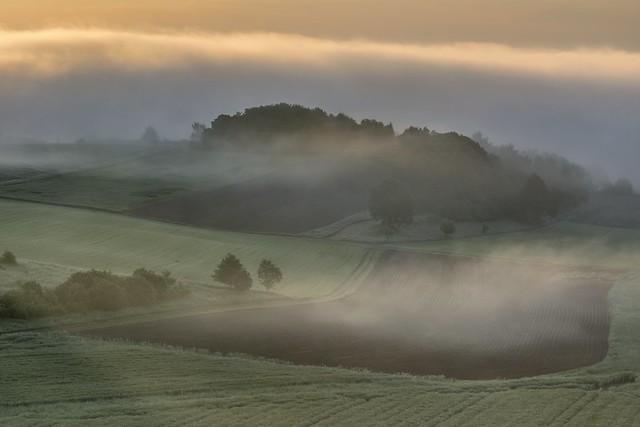 *Morgennebel über den Feldern*