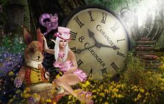 I Dream I'm Back In Wonderland