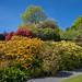 Colourful garden @ Stoneywell