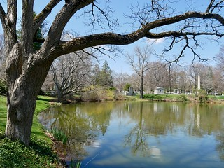 Halcyon Pond