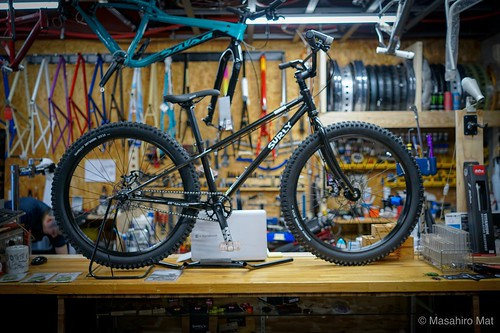 surly lowside