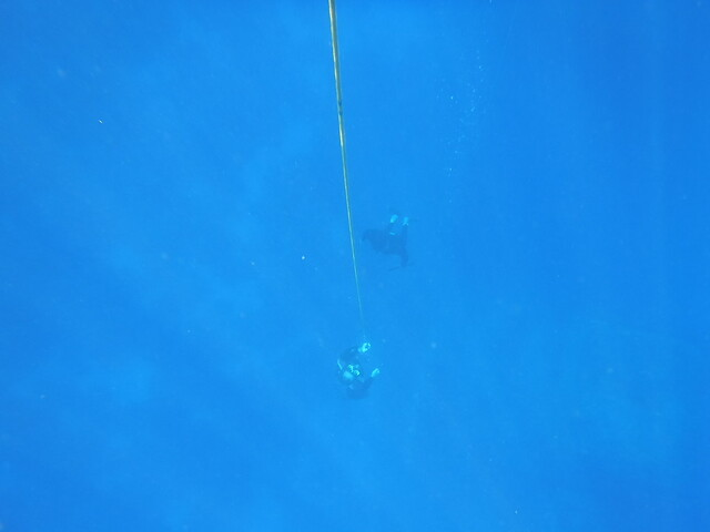 Jay Ascending from 21m, Freedive Utila
