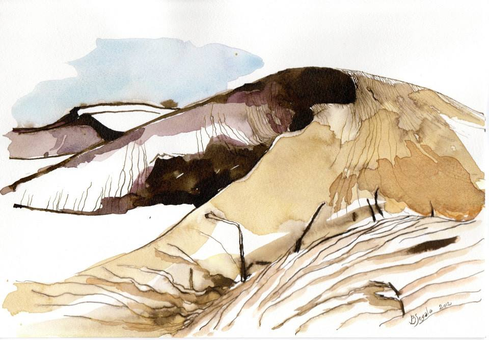 Rajastan acquerello 2 - 2012