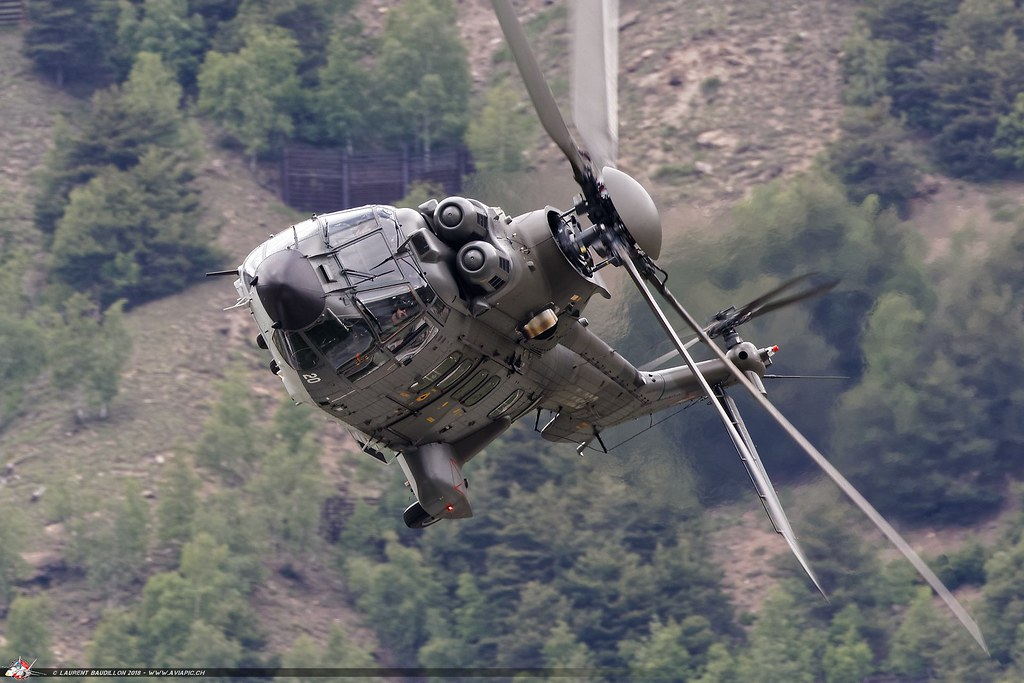 Super-Puma Display