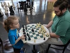 Bunny Playing Chess