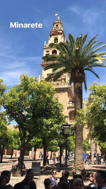 Excursión a Córdoba (1)