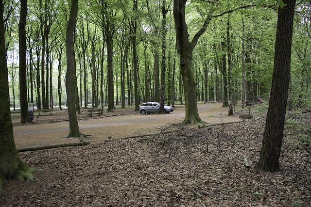 auto geparkeerd Kaapse bossen Doorn