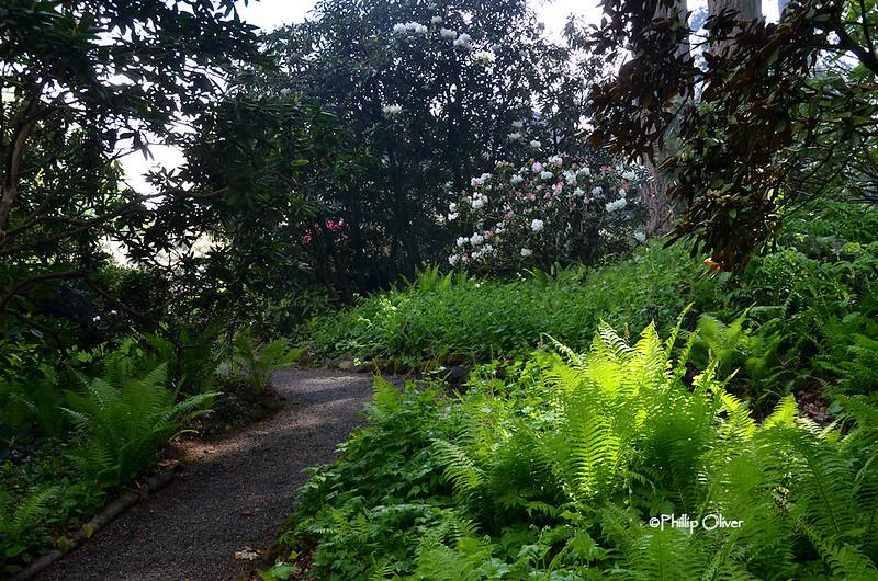 cecil-smith-garden-19