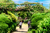 Photo:Rose Garden in The  Ofuna Botanical Garden, Ofuna, Kamakura : 神奈川県立フラワーセンター大船植物園のバラ園 By Dakiny