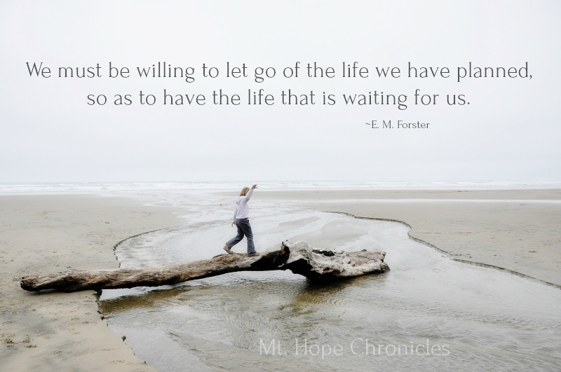 Let Go @ Mt. Hope Chronicles