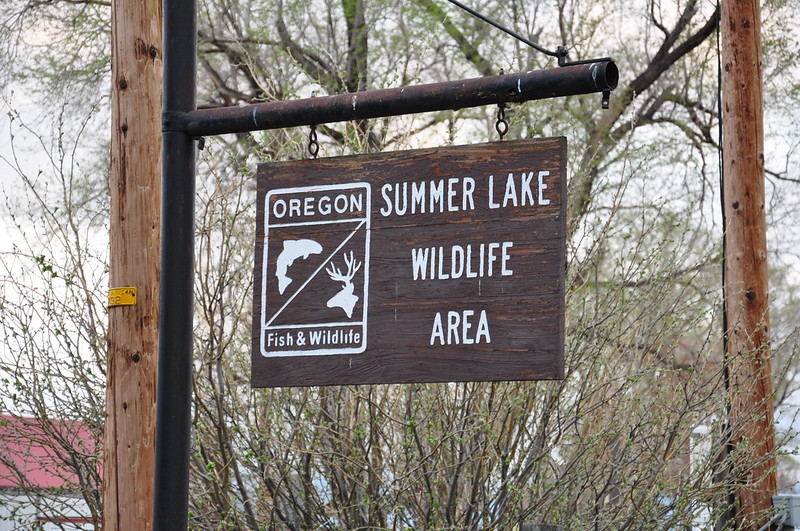 Summer Lake Wildlife Area