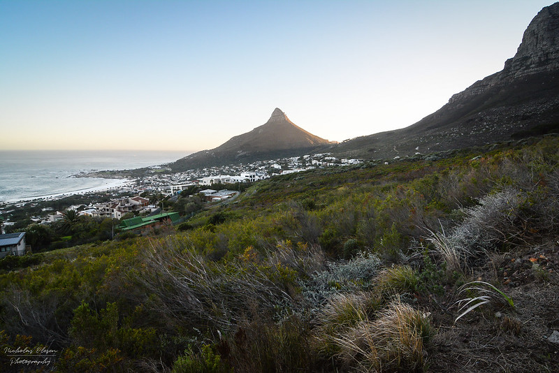 South Africa | Table Mountain Hike