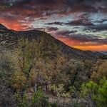 Madera Canyon Sunset