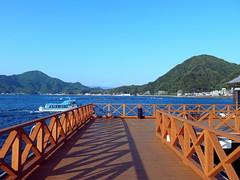 Awashima Marine Park あわしまマリンパーク
