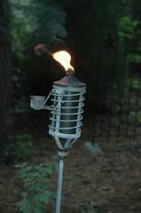 Mosquito repellent, DSC 3145