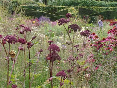 Piet oudolf gardens a gallery on flickr for Piet oudolf private garden