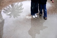 puddle, footwear, water,
