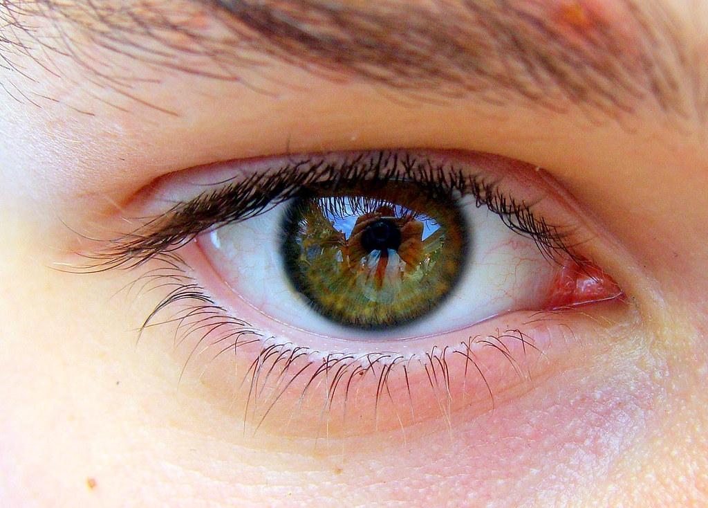 Shaun's eye