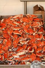 shrimp(0.0), seafood boil(0.0), crayfish(0.0), fish(0.0), king crab(0.0), food(0.0), crab(1.0), animal(1.0), crustacean(1.0), seafood(1.0), invertebrate(1.0), dungeness crab(1.0), produce(1.0),