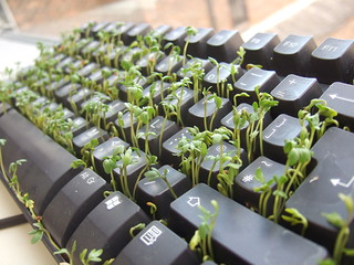 Keyboard and Cress