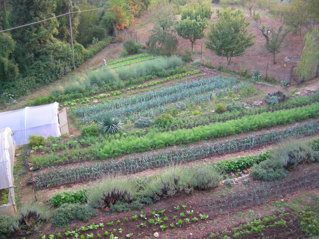 Spannocchia Organic Farm