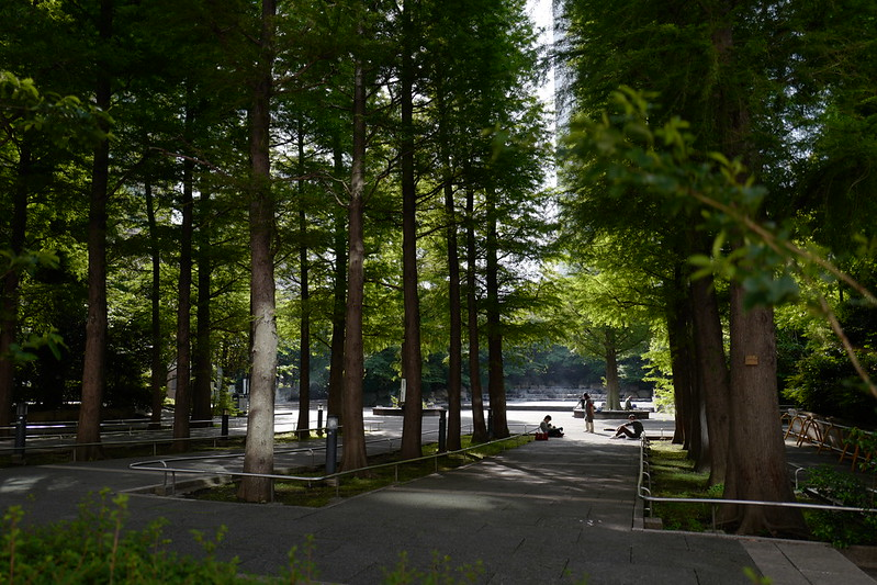 Leica Q東池袋中央公園入口