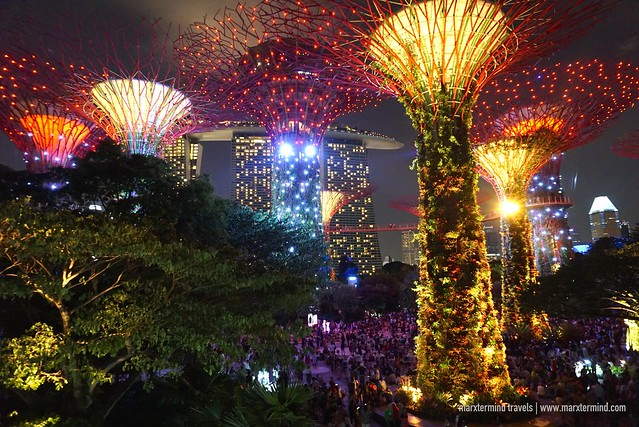 Garden Rhapsody Light and Sound Show Singapore