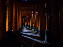 More Gates at Night - Fushimi Inari Shrine