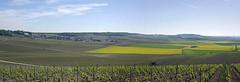 Montgenost (Marne)