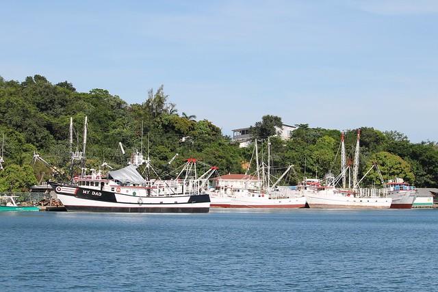 Shrimping Fleet, Roatan