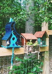DIY Bird house project. Three done. More to come. Whimsical 😎
