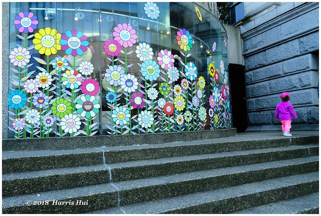 The Flower Generation - Art Gallery XP7845e