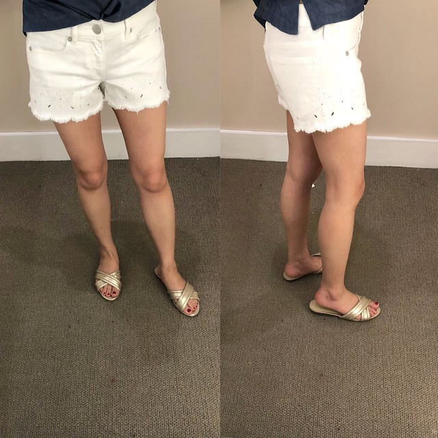 LOFT Eyelet Cuff Denim Shorts, size 24/00 regular