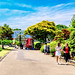 At Ofuna Botanical Garden, Ofuna, Kamakura : 神奈川県立フラワーセンター大船植物園