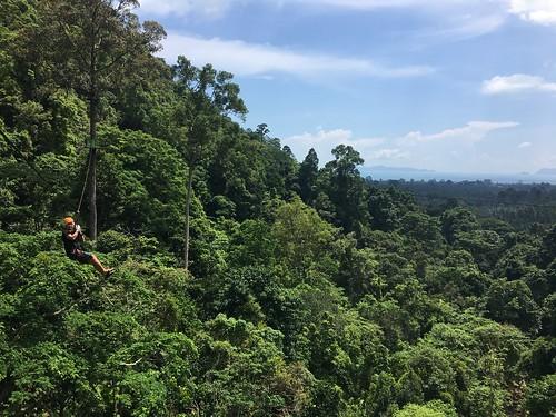 サムイ島でジップライン体験‐シービューの森を飛ぼう! (スカイホークアドベンチャー4時間ツアー)