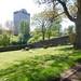 Irvine Old Parish Churchyard (454)