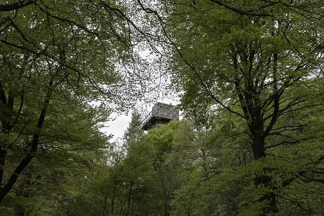 uitkijktoren in zicht kaapse bossen