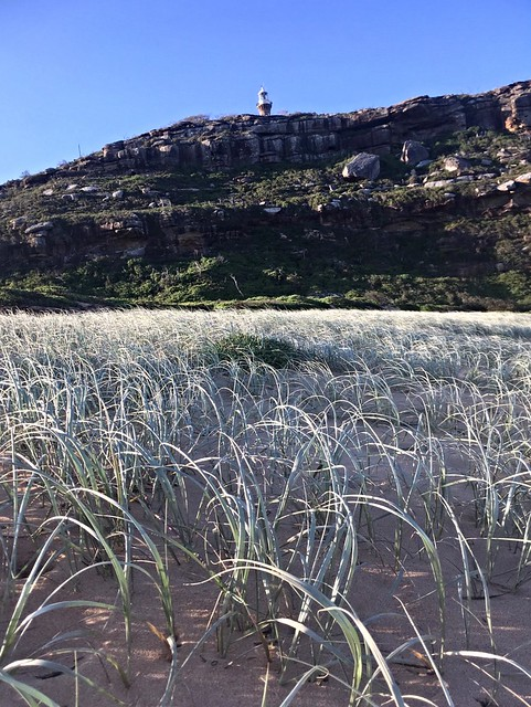 Barrenjoey Lighthouse from the ocean beach.