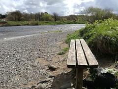 Coldstream Riverside Walk, April 2018