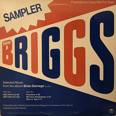 BRIAN BRIGGS:SPECIAL SAMPLER(SELECTED MUSIC FROM THE ALBUM BRIAN DAMAGE)(JACKET A)
